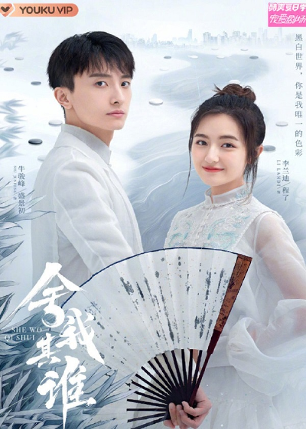 Watch Chinese Drama Go Into Your Heart on Cntvshow.com